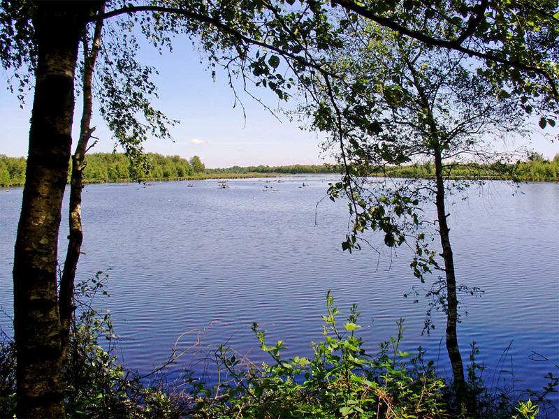 Natuurgebied Zwillbrocker Venn
