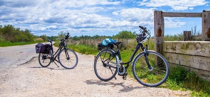 Wandelen en fietsen vanaf Reuselink